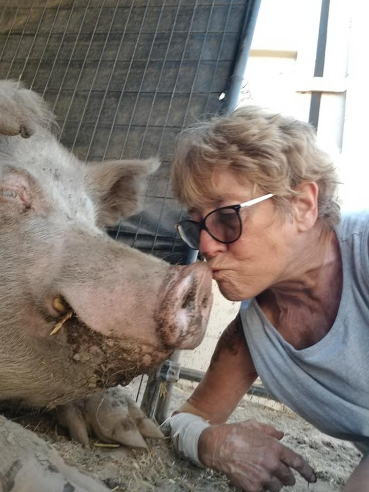 Sue Kissing a Pig